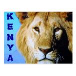 Postal del safari de Kenia