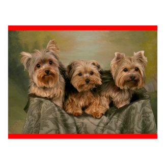 Postal del saludo del perro de perrito de Yorkshir
