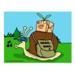 Postal del snail mail