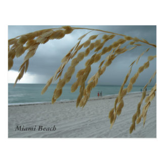 Postal del sur de Miami de la playa