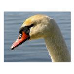 postal del swanhead