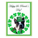 Postal del terrier de Boston del día de St Patrick