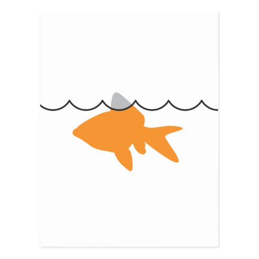 Postal del tiburón del Goldfish