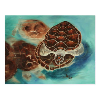 Postal del tiempo de la tortuga