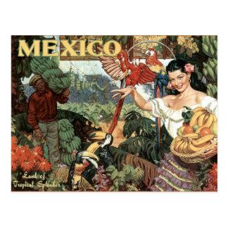 Postal del viaje del vintage de México
