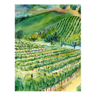 Postal del viñedo de California
