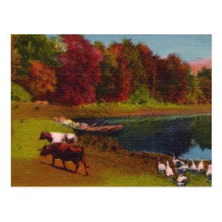 Postal del vintage del día del otoño
