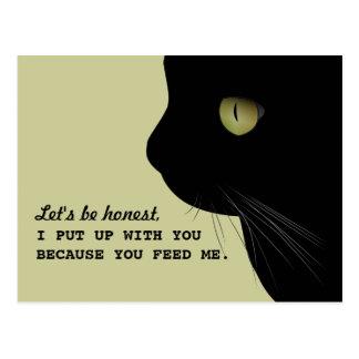 Postal divertida de la actitud honesta de los gato