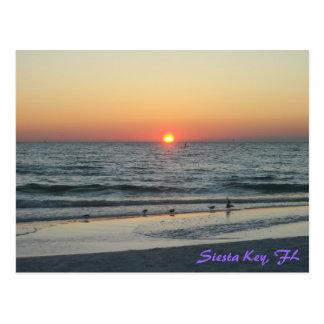 Postal dominante de la puesta del sol de la Florid