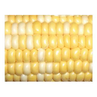 Postal dulce del maíz en la mazorca