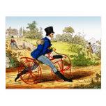 Postal:  El caballo de la afición:  Prototipo de