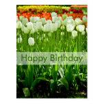Postal el | Geburtstagskarte Tulpen del cumpleaños