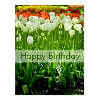 Postal el Geburtstagskarte Tulpen del cumpleaños