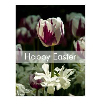 Postal el | Osterpostkarte Tulpen de Pascua de los