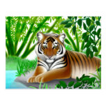 Postal en peligro del tigre de Sumatran