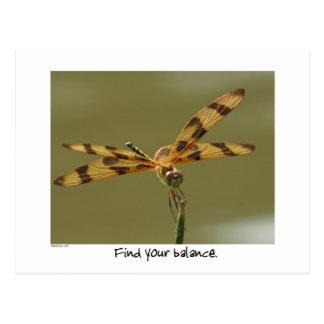 Postal equilibrada de la libélula