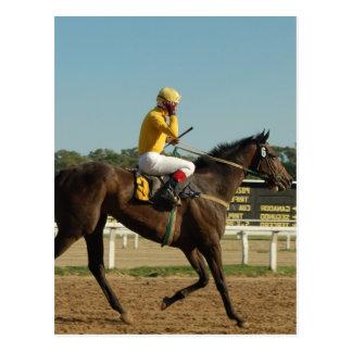 Postal excelente del caballo de raza