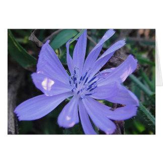 Postal flor apuesta azul de caza, en blanco tarjeta de felicitación