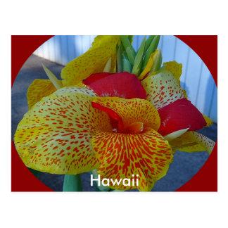 Postal floral hawaiana