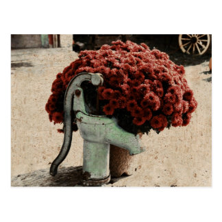 postal floral roja de la composición del país