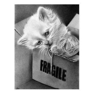 Postal frágil de la caja del gatito