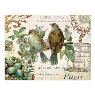 Postal francesa de los pájaros del vintage