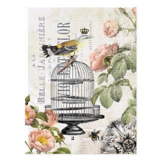 Postal francesa del pájaro del vintage