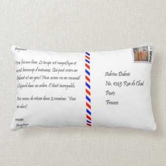 Postal francesa y africana cojín