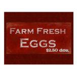 Postal fresca de los huevos de la granja