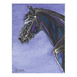 Postal frisia del caballo