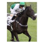 Postal galopante del caballo de raza