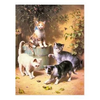 """Postal: """"Gatitos que juegan con los escarabajos """""""