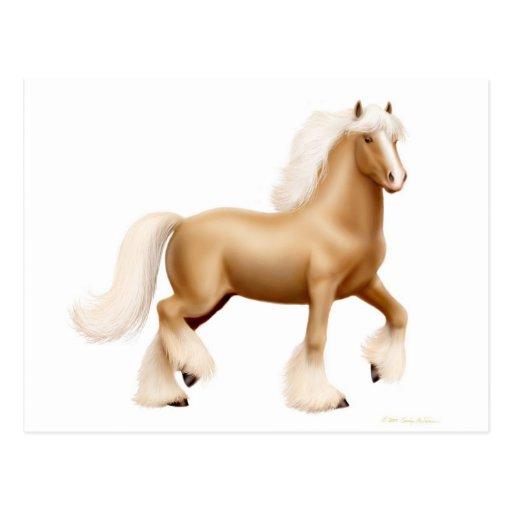 Postal gitana del caballo de proyecto
