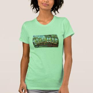 POSTAL GRANDE de la LETRA de Skokie Illinois IL de Camisetas