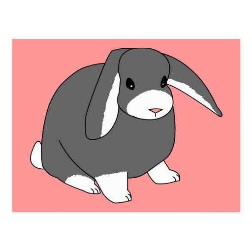 Postal gris del conejo del Lop