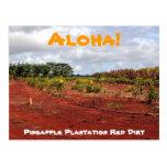 Postal hawaiana de la plantación de la piña