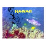 Postal hawaiana de los pescados