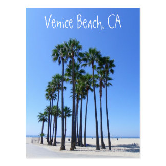 ¡Postal hermosa de la playa de Venecia!