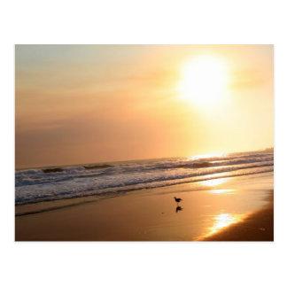Postal hermosa de la puesta del sol del océano de