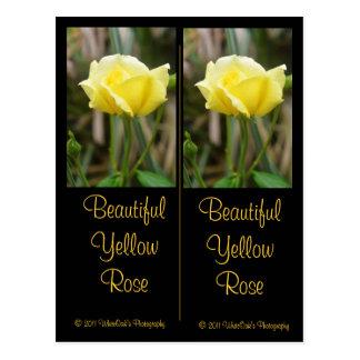 Postal hermosa de la señal del rosa amarillo