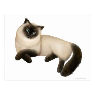 Postal Himalayan amistosa del gato siamés