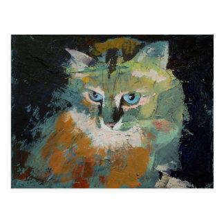 Postal Himalayan del gato