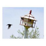 """Postal """"hogar dulce casero """" de la casa del pájaro"""