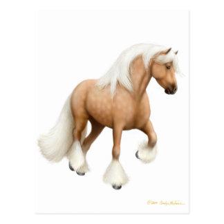 Postal irlandesa del caballo de la mazorca
