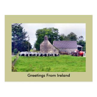 Postal irlandesa divertida del espantapájaros