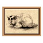Postal japonesa del dibujo de la tinta del gato na