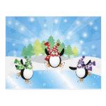 Postal linda del patín de hielo del trío del pingü