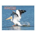 Postal magnífica pelican1 de Oklahoma del lago
