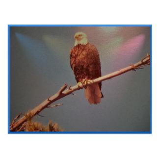Postal majestuosa de Eagle