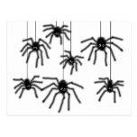 Postal melenuda de las arañas del dibujo animado